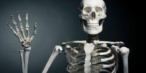 huesos-de-el-esqueleto-humano